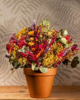 Centro colorido de flor preservada